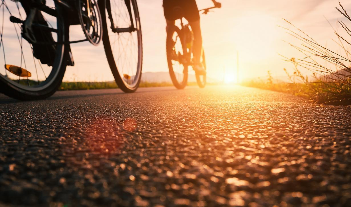 Disponemos de 21 rutas seleccionadas de carretera, cicloturismo o BTT para todos los niveles.