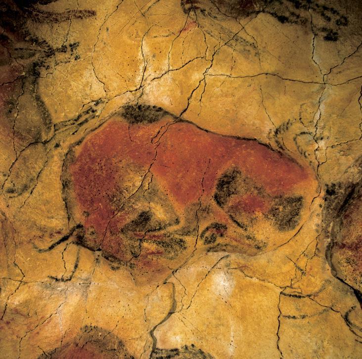 El bisonte encogido es una de las figuras más reconocidas de la Cueva. Destaca por su enorme expresividad y la excelente reproducción anatómica. (Foto: Turismo de Cantabria, turismodecantabria.com)