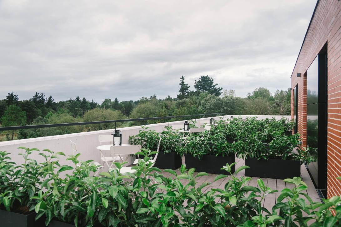 Las habitaciones premium cuentan con una terraza propia para disfrutar de las vistas al atardecer.